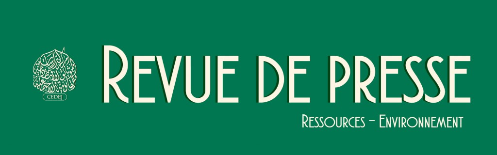 banner-rp-cedej-ressources